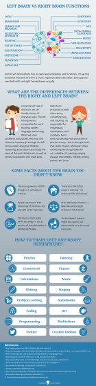 Left and Right Brain—The Surprising Truth